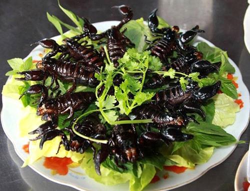 Món ngon từ bọ cạp