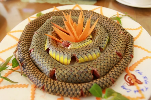 Thịt rắn thơm ngon, bổ dưỡng