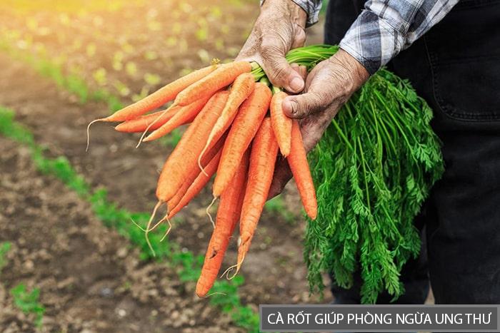 Ăn cà rốt có thể phòng ngừa ung thư hiệu quả