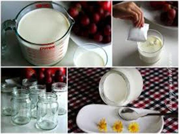 Những lưu ý quan trọng khi tự làm sữa chua 2