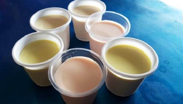 Hướng dẫn cách làm sữa chua phô mai 1