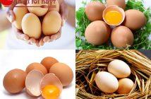 ăn trứng gà có tác dụng gì