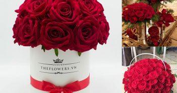 Cách cắm hoa hồng đỏ