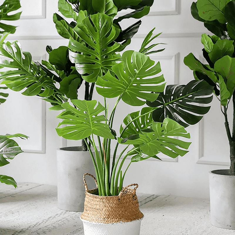 Không nên trồng cây giả trong nhà