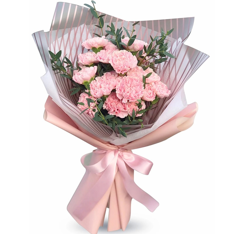 Nhắc đến hoa tặng sinh nhật mẹ, chắc chắn không thể nào bỏ qua Cẩm Chướng