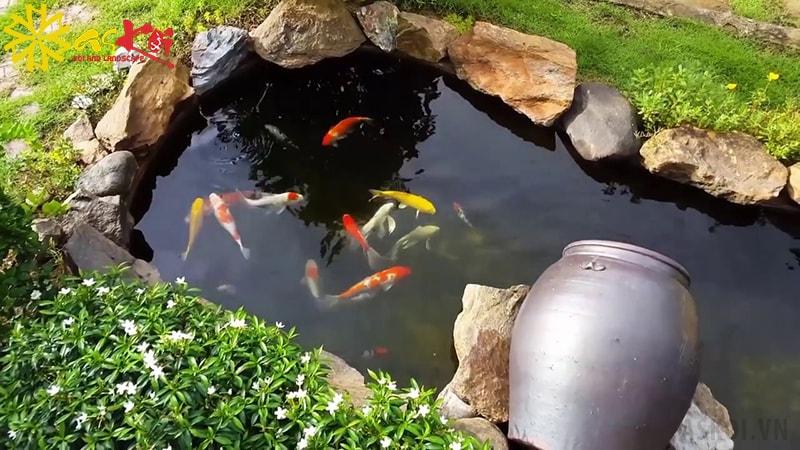 Có rất nhiều điều cần lưu ý khi thiết kế hồ nuôi cá Koi mini